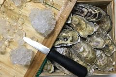 Oysters Fine De Claire